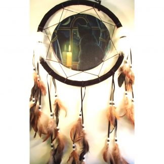 Lisa Parker Midnight Vigil Dreamcatcher